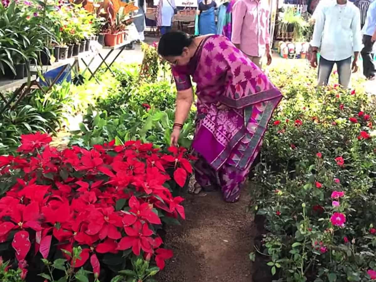 Horticulture Agriculture Expo from Jan 28 at Necklace Road