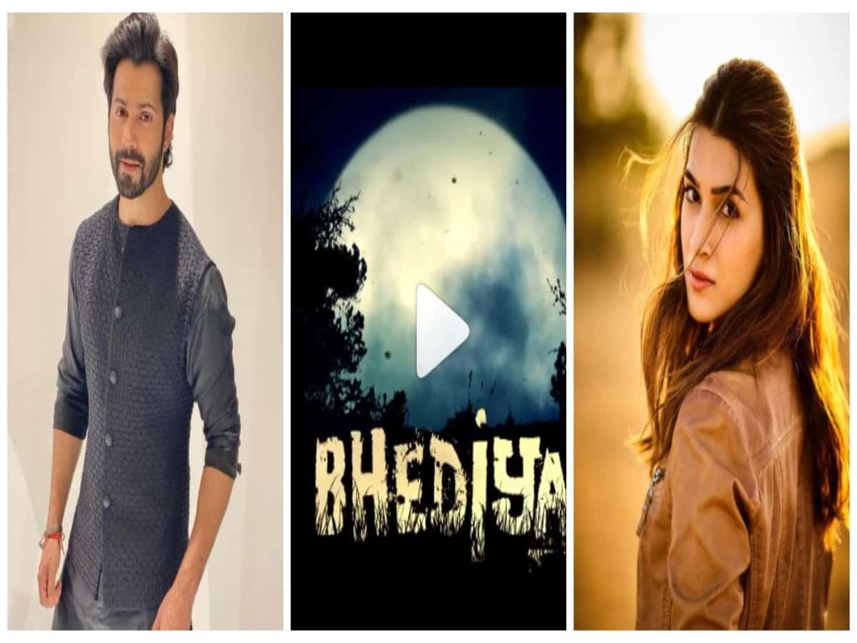 Varun Dhawan, Kriti Sanon team up for horror-comedy 'Bhediya'