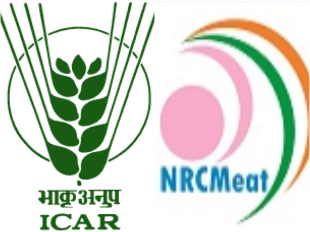 ICAR-NRCM and IIP collaborate for collaborative research, training and extension