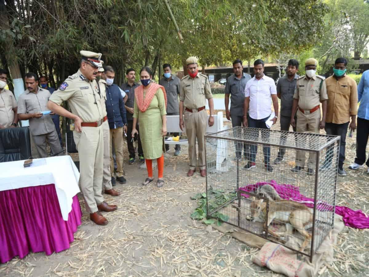 Hyderabad: Cops nab 3 wild animal poachers; rescue live deer