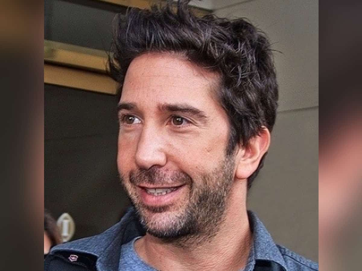 David Schwimmer's all set to meet his 'Friends'