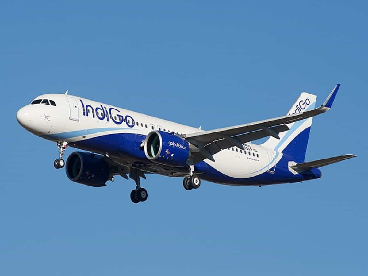 IndiGo introduces door-to-door baggage transfer service