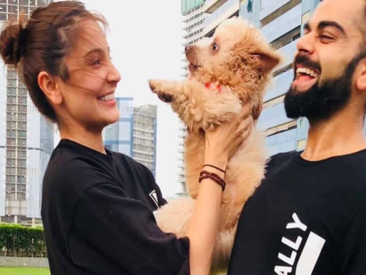Watch: Anushka, Virat's priceless lockdown moments with furry friends