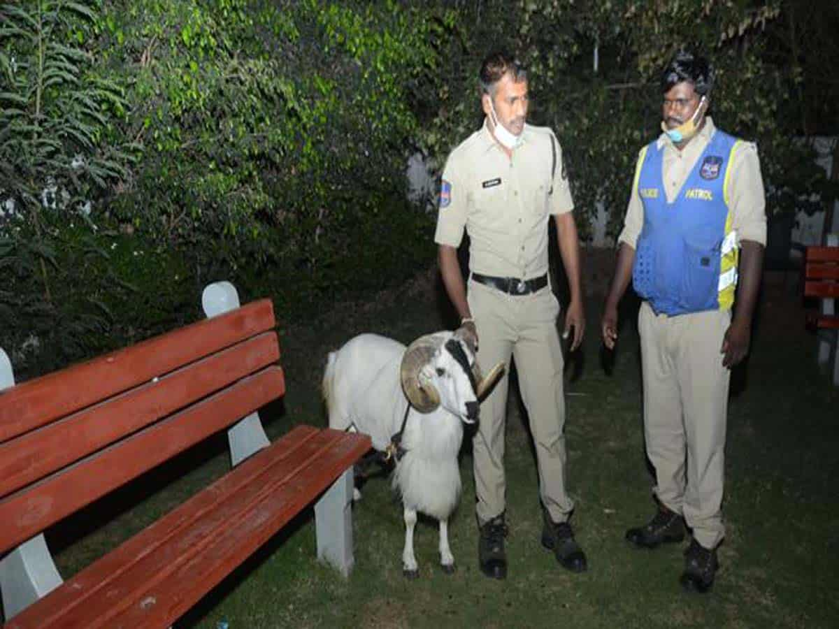 15 held for Ram fights in Hyderabad