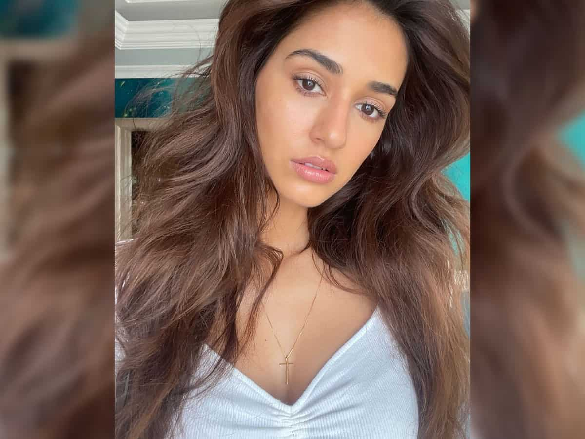 Disha Patani channels her love for cats, shares adorable pictures