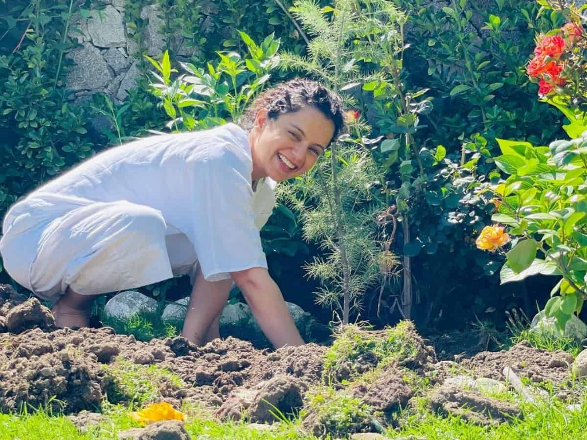 Kangana plants trees in Tauktae aftermath; requests BMC, Gujarat govt to follow suit