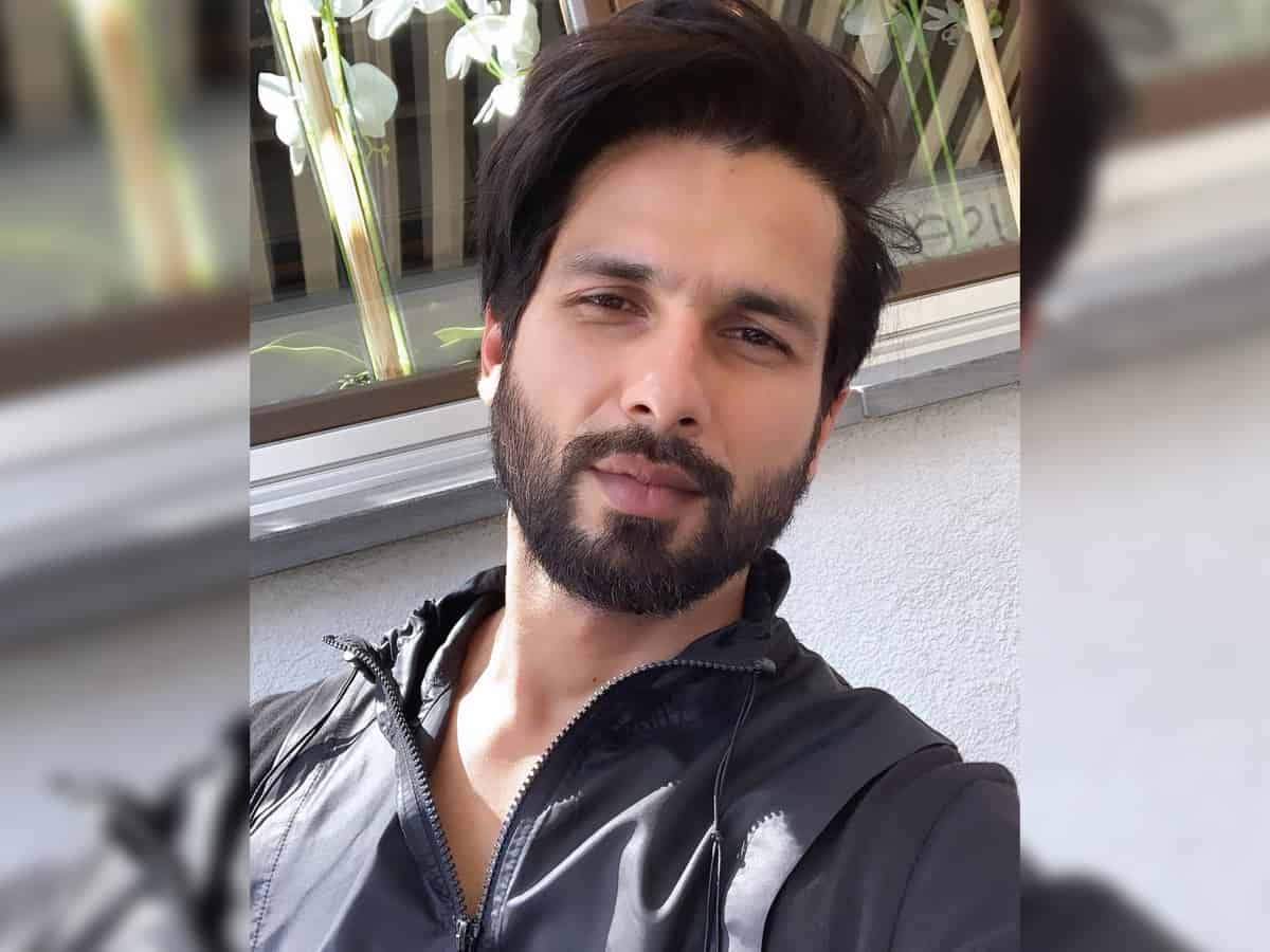Shahid Kapoor says he wants to be a part of great stories