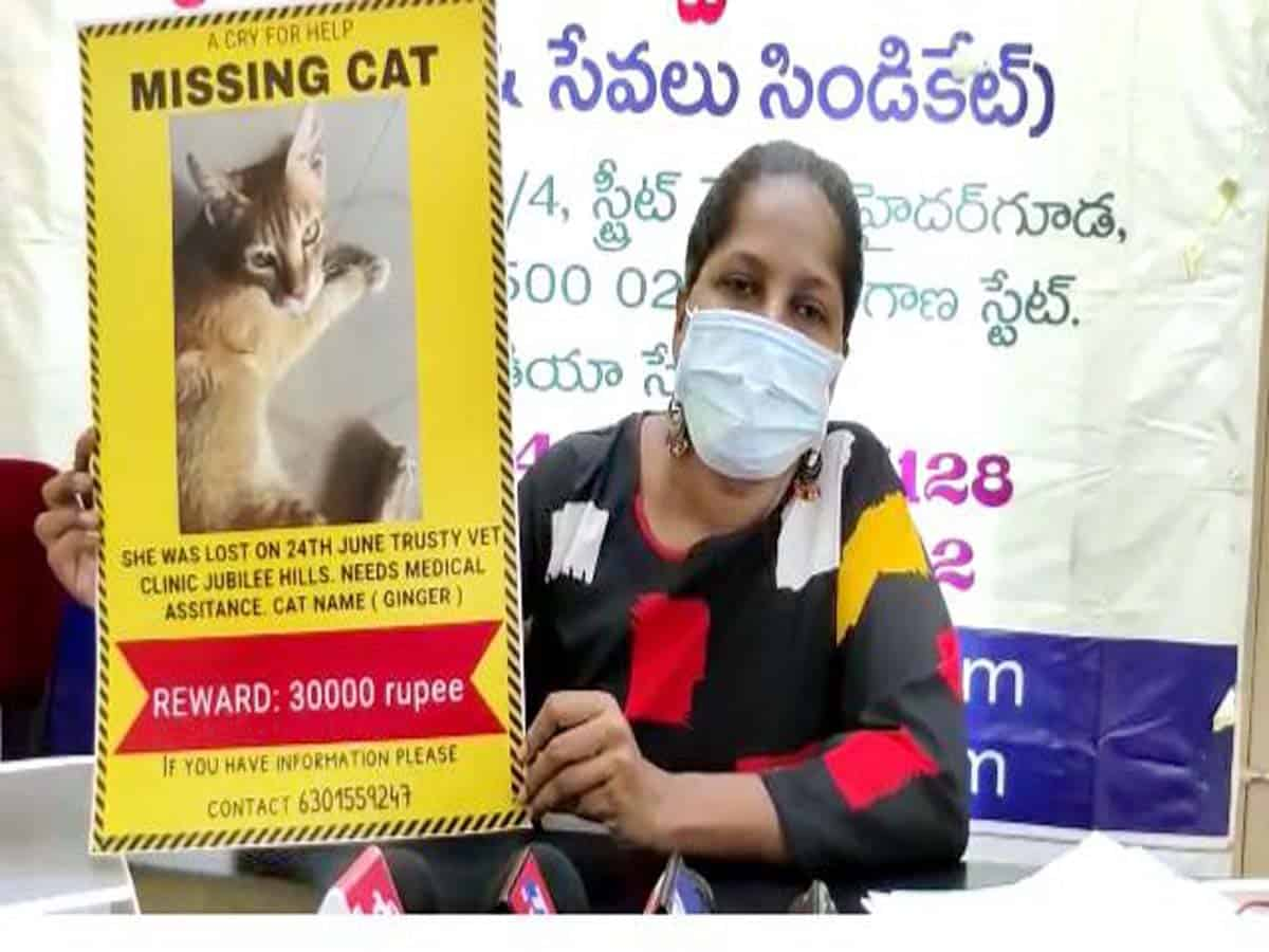 Cat owner announces Rs.30K reward to get her pet back