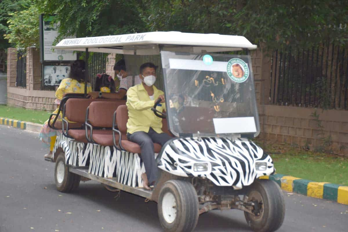 2536 visitors throng  Zoo park as it reopens after 70 Days