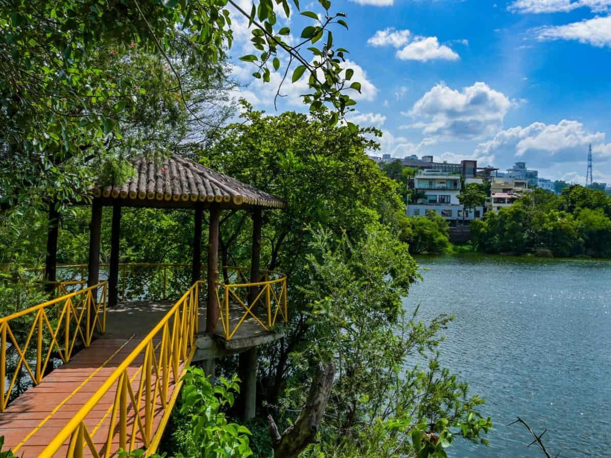 Hyderabad: Lotus Pond turns attractive tourist hub