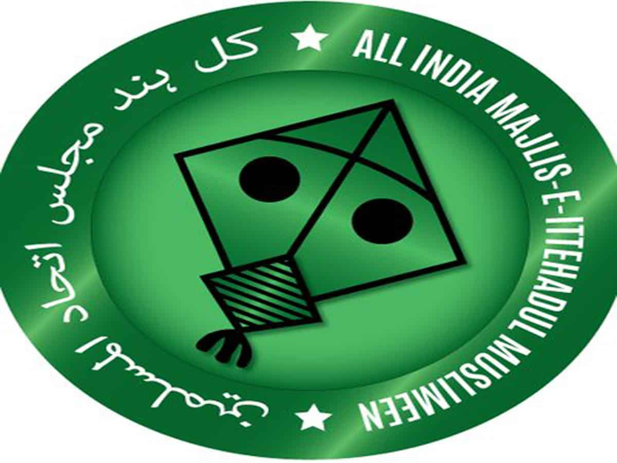 Will give Muslims viable option in Delhi like Hyderabad: AIMIM