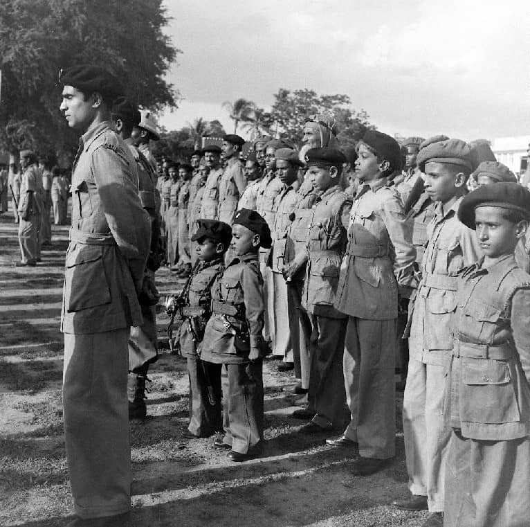 Hyderabad 1948: How the MIM and Razakars held sway over the Nizam