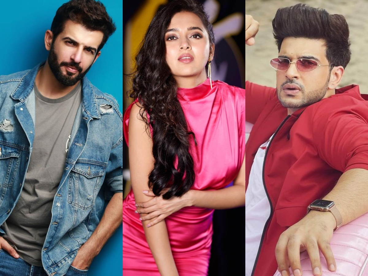Jay Bhanushali highest paid Bigg Boss 15 contestant; check pay list here