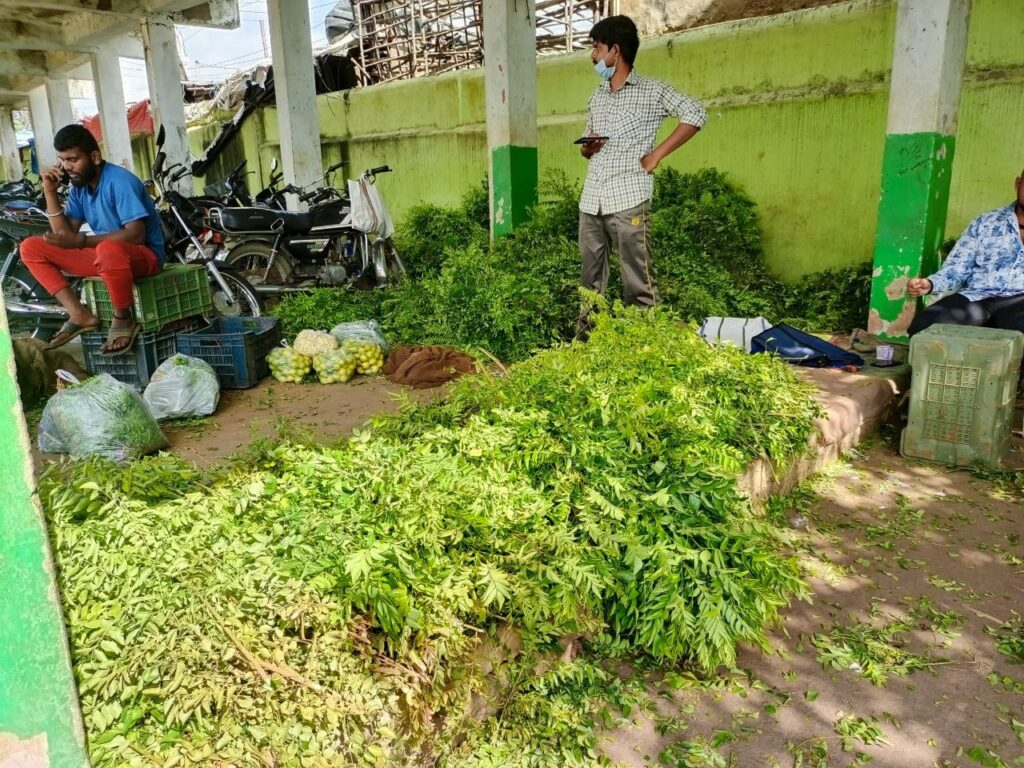 Cyclone Gulab effect: Vegetable prices skyrocket due to crop damage in Hyderabad